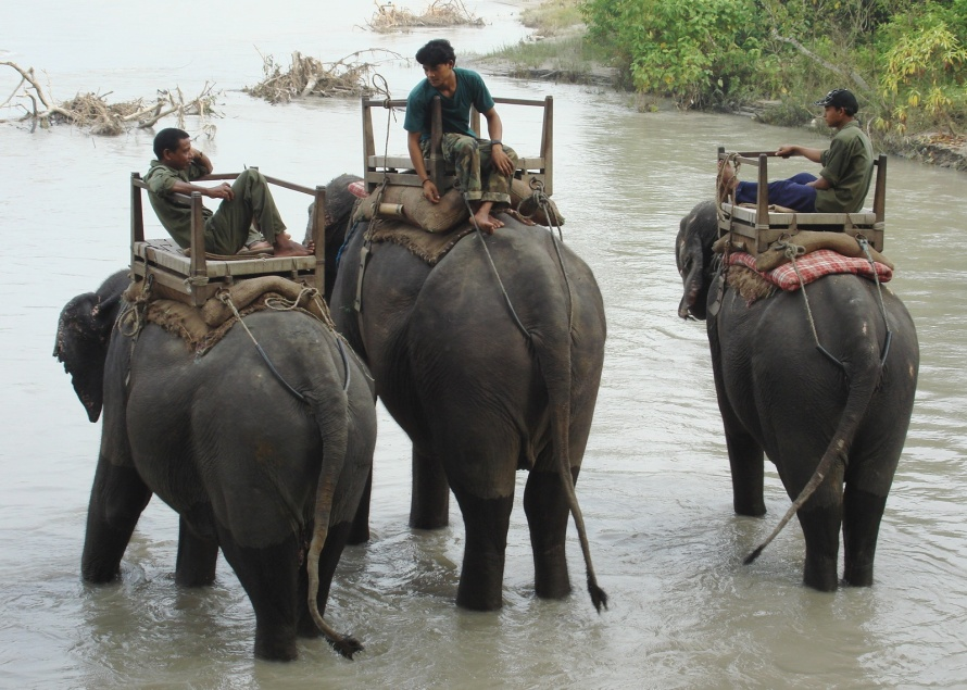 Elephant herders relax in Chitwan National Park, Nepal