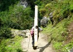 A sherpa carrying a plank of wood in the Himalayas, Nepal